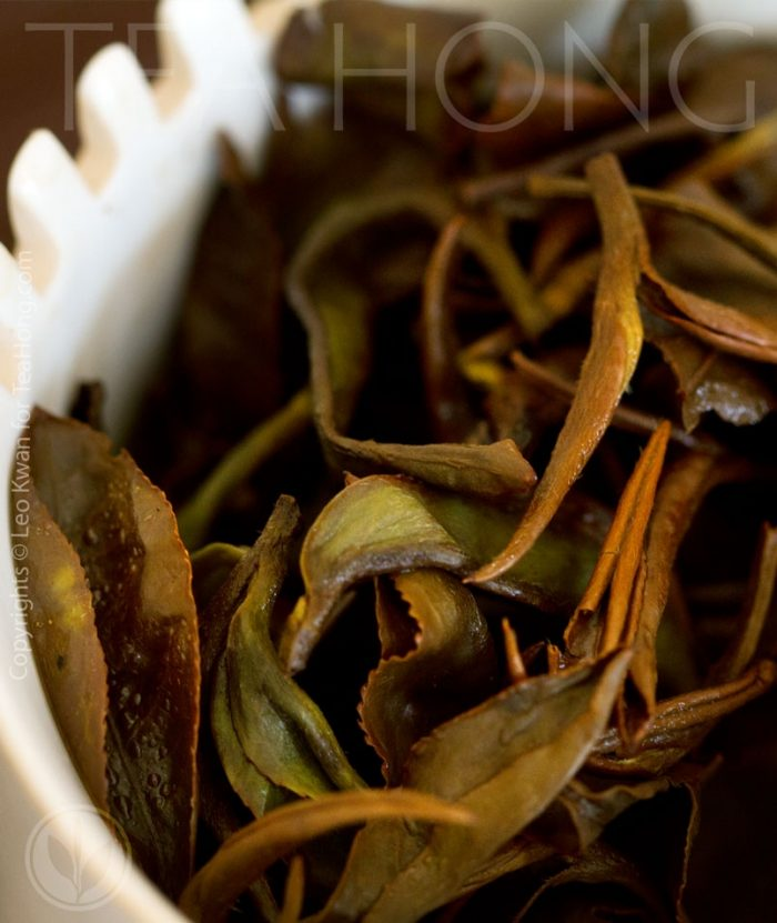 Different from many other teas, sniffing directly from the infused leaves is as enjoyable as the underside of the lid.