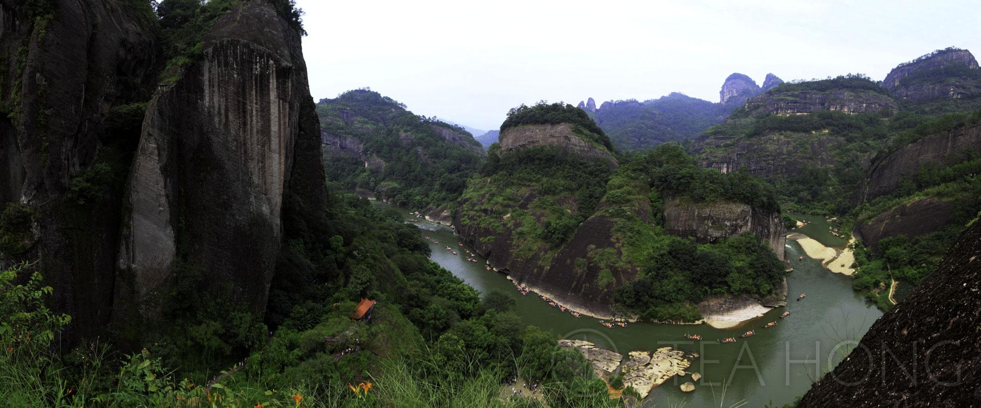 Tea Regions of TeaHomg.com: Wuyi