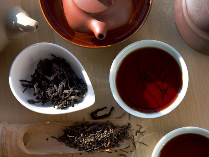 The Peculiar Category of Pu'er