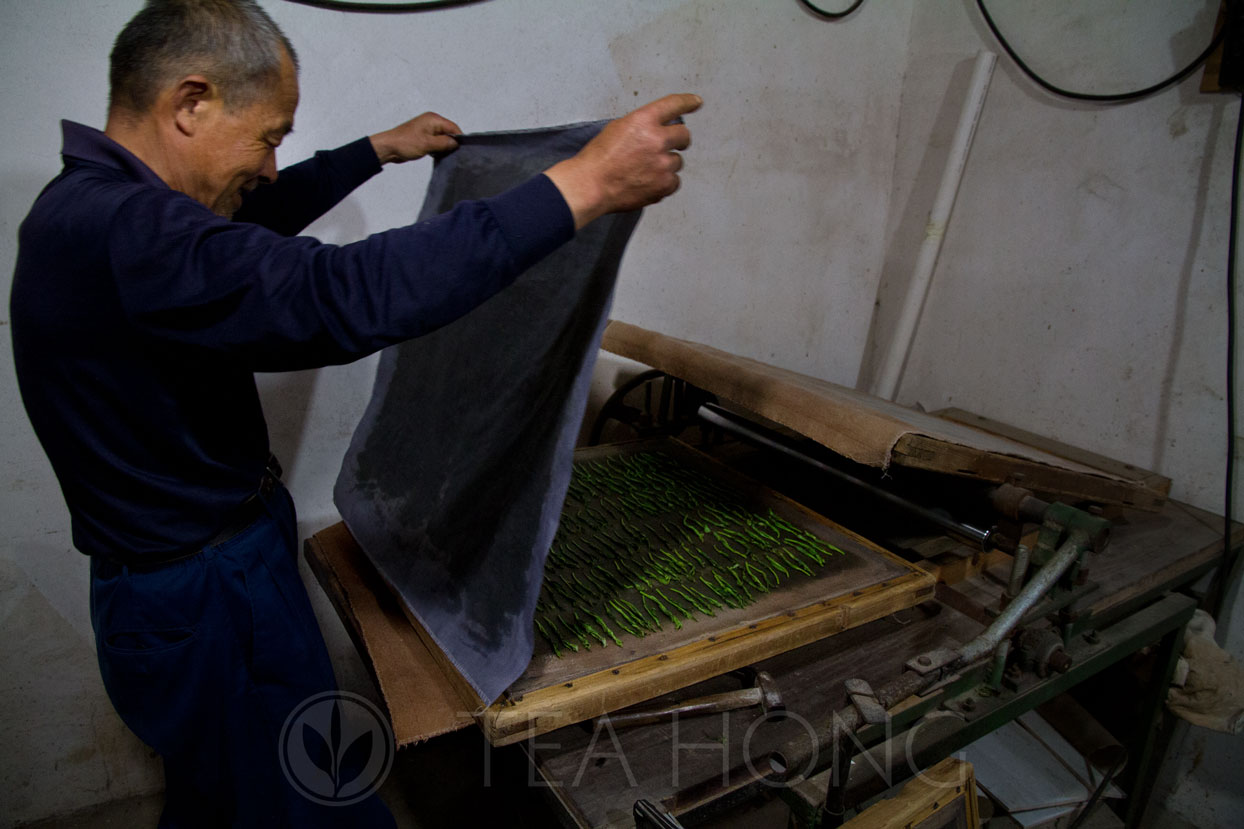 Covering the leaves before the press