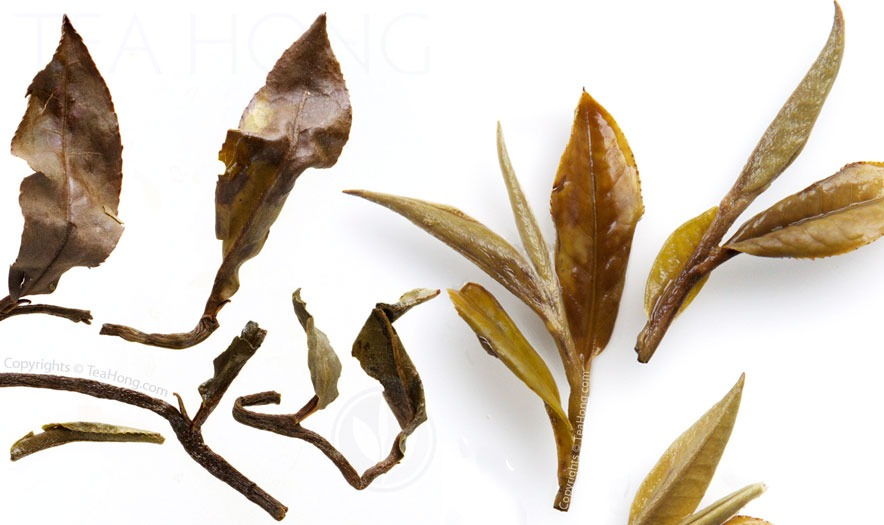 The infused tealeaves of Premodern Peony compared with those of