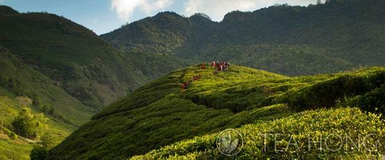 Nepal - Himalayas region
