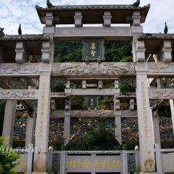 Wang's family Tieguanyin farm